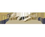 DSSHotels logo